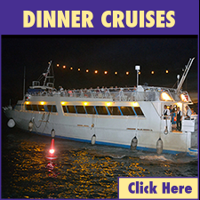 Lahaina Harbor Dinner Cruises link