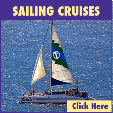 Lahaina Harbor Sailing Cruises link